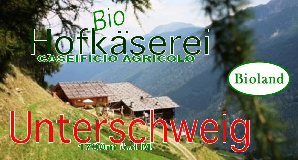 logo_unterschweig2